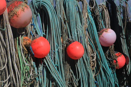 Ropes and Floats, Sennen Cove