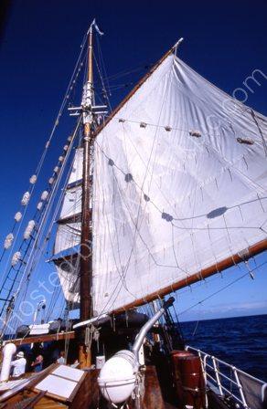 Soren Larsen sailing
