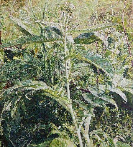 Midsummer Artichoke