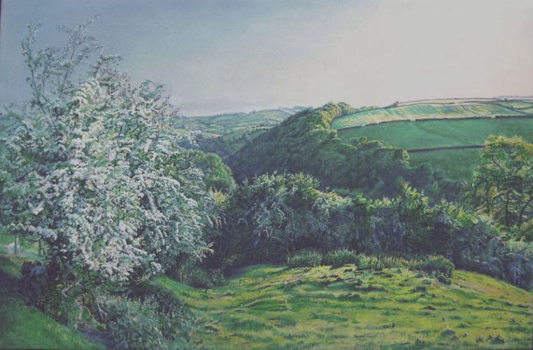 May Evening, Shropshire Hills.