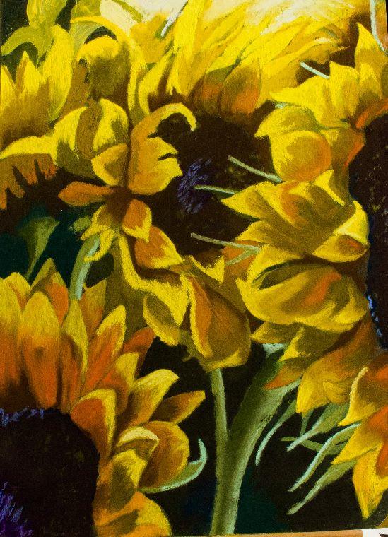 Sunflower three