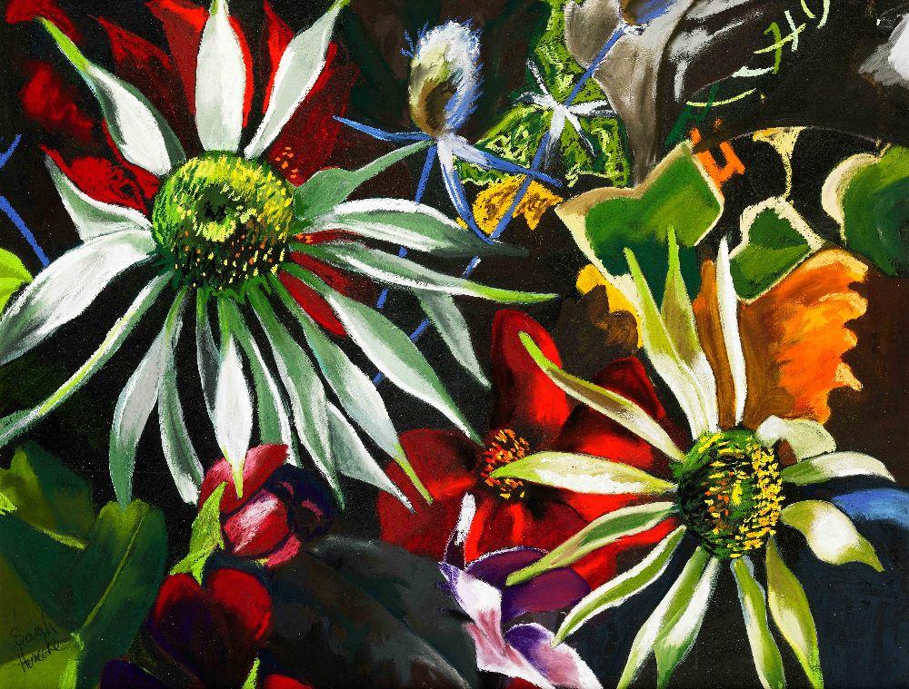 echinacea large for Jackson website
