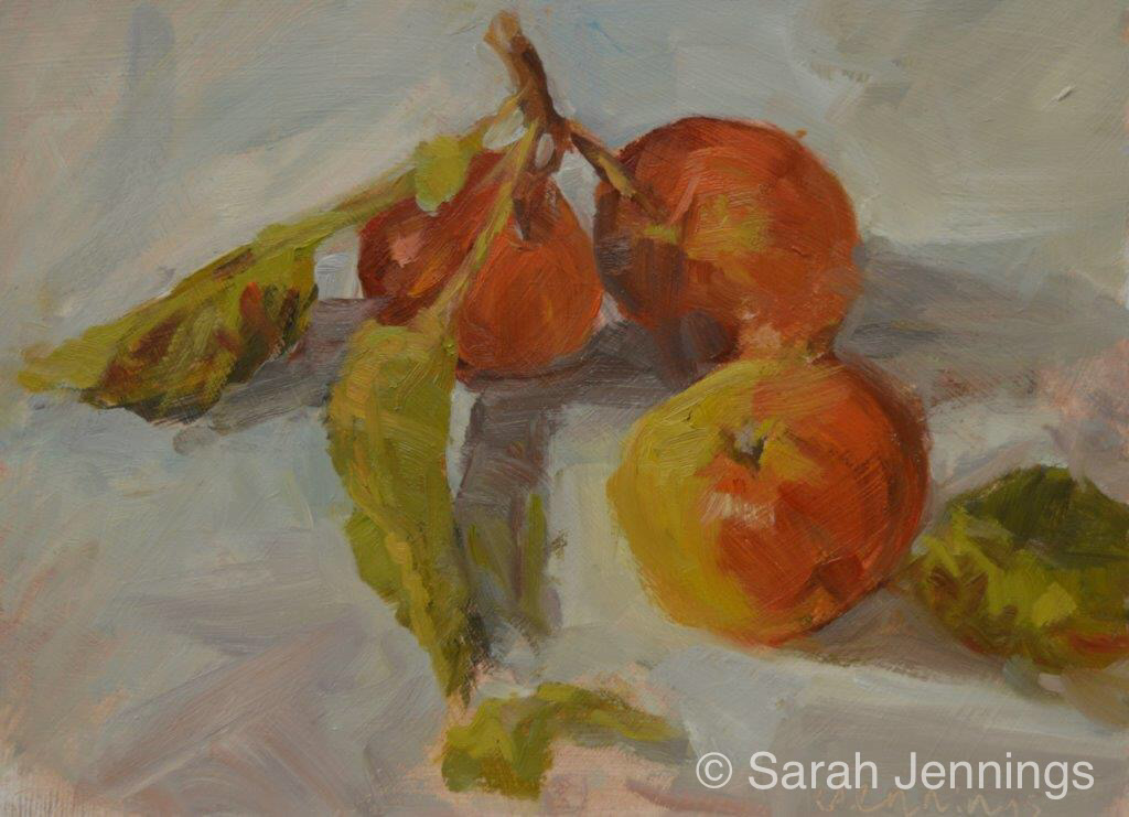 November apples  (sold)