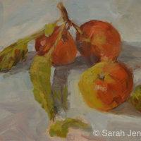November apples  (sold)