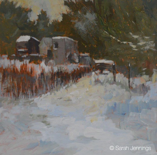 December snow on the allotments
