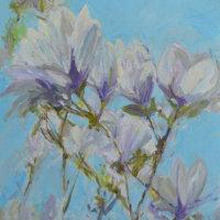 Blue Sky Magnolia