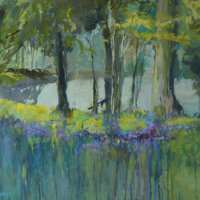 Bluebell Carpet (currently on exhibition at Stamford Arts Centre priced £350 framed)