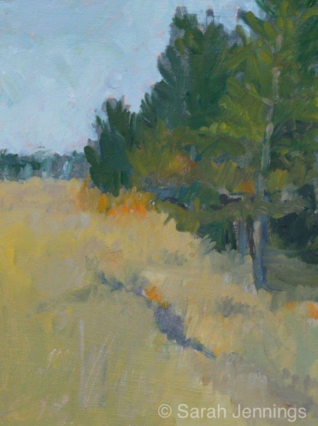 Pines and Dunes at Holkham (currently on exhibition at Stamford Arts Centre priced £80 framed)