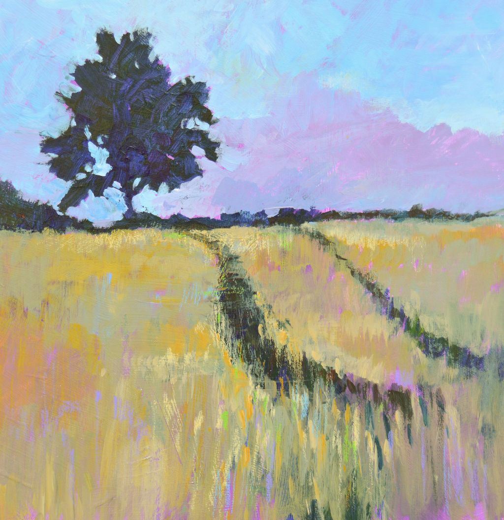 Shady Tree in a Summer Cornfield
