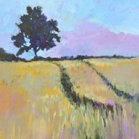 Shady Tree in a Summer Cornfield
