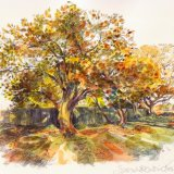 Autumn Bushey SOLD