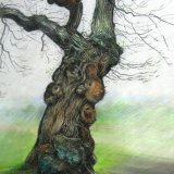 Winter Tree SOLD