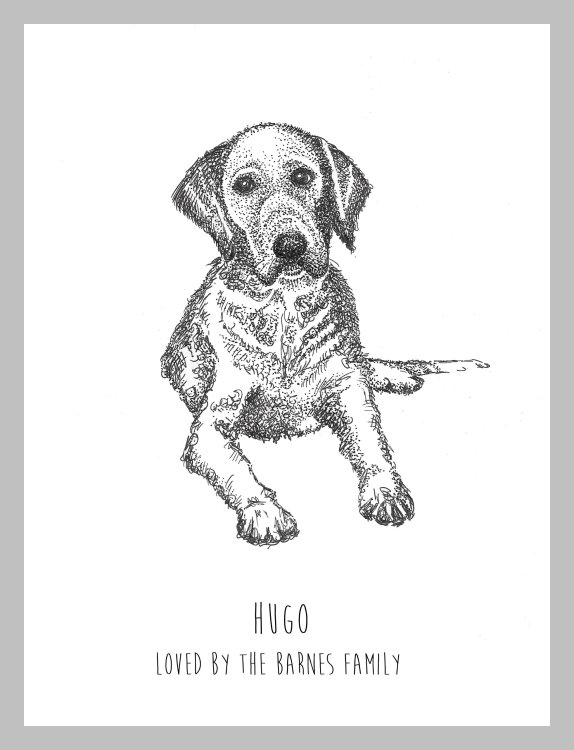 Pen drawing of your pet from a photo