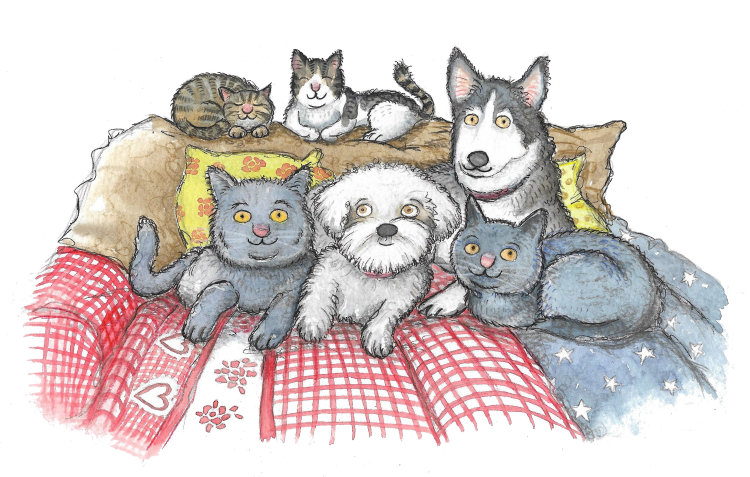 Pet illustrations watercolour painting from photos