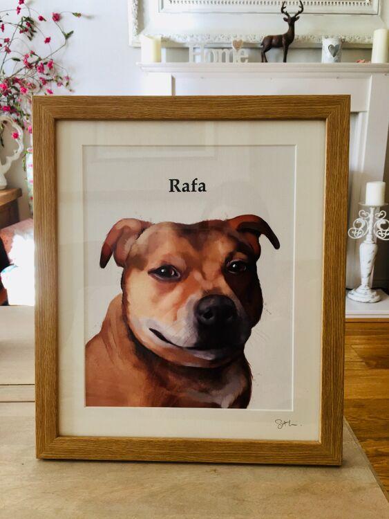 Dog portrait framed