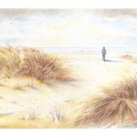 'Sand Dunes'