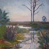 Birch - wet walk