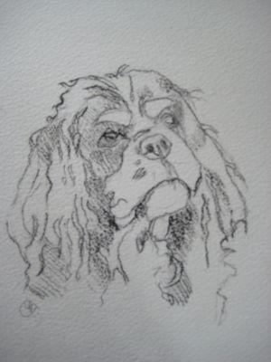 Commission - Benji 2011