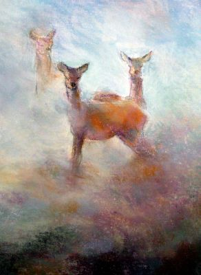 'Deer in the Mist' - New forest