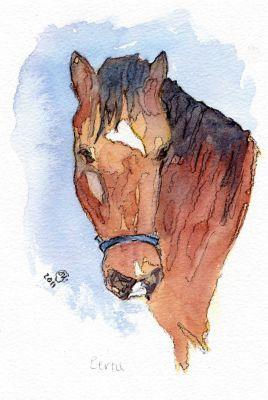 Jigsaw series - Bertie the horse 2011
