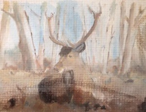 Stag in The New Forest
