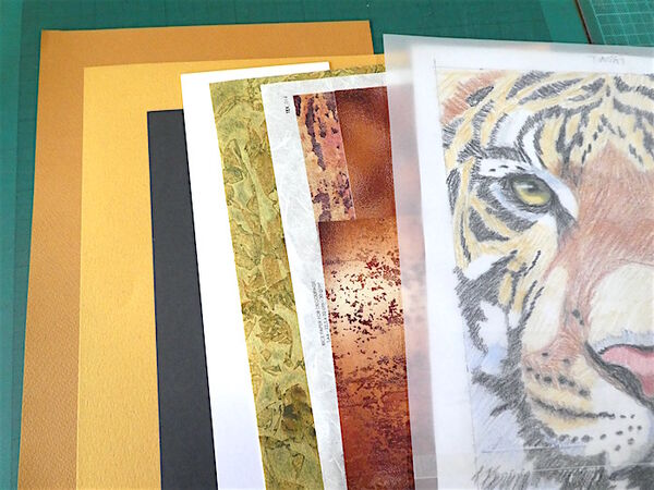 Tiger papers