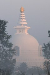 Lumbini Peace Pagoda in Early Morning Mist