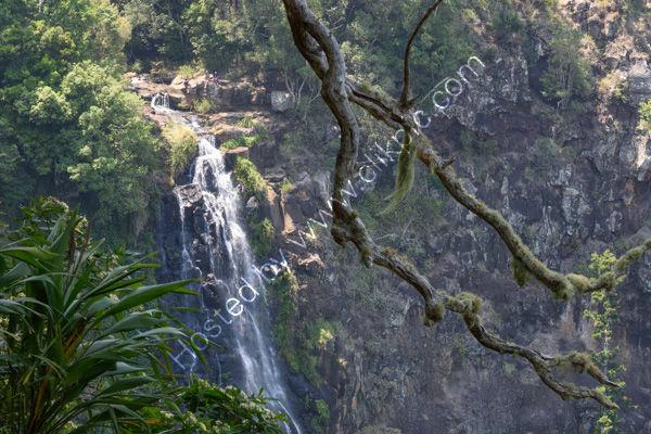 Moran's Falls, Lamington NP