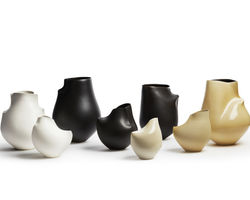 Spine-Camber Vessels