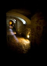 Journey into the Cellars