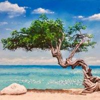 Gnarled tree Aruba - pastels