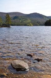 Loch-an-Eilein-Summer