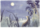 Moonlight illustration for children's picture book