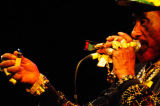 Lee Scratch Perry, WOMAD, 2008
