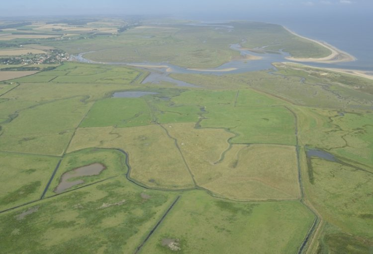 Aerial of Overy grazing marshes Norton and Scolt Head Island