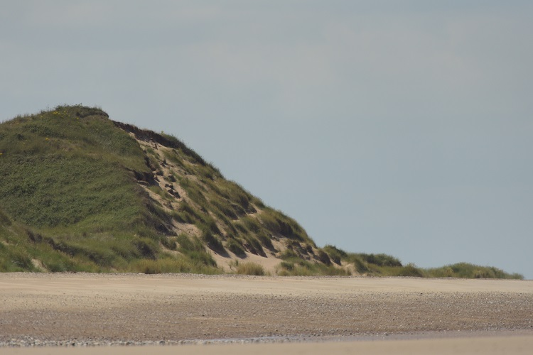 Dune on Scolt Head