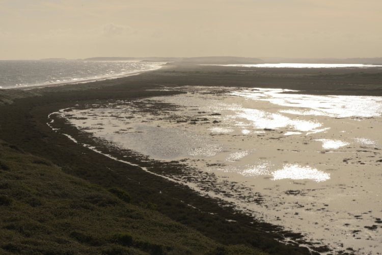 Hut Marsh at High tide looking west towards Holkham
