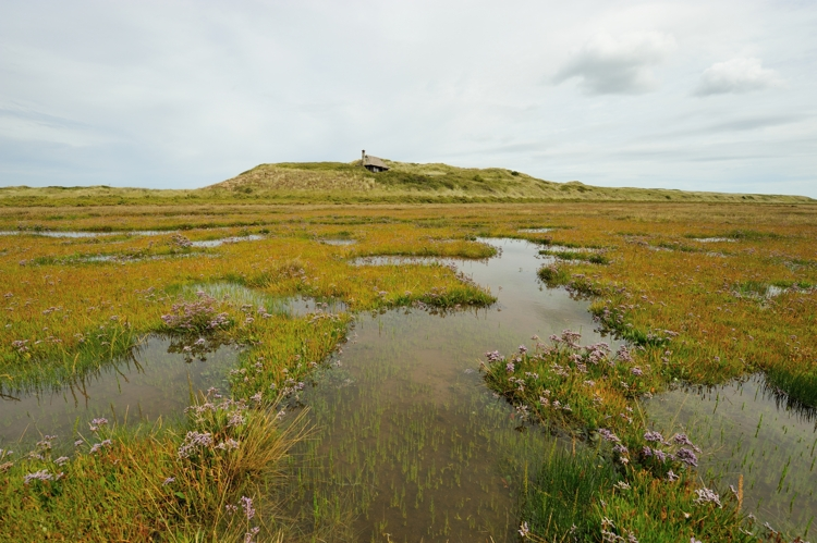 Salt pans on Hut Marsh Scolt Head