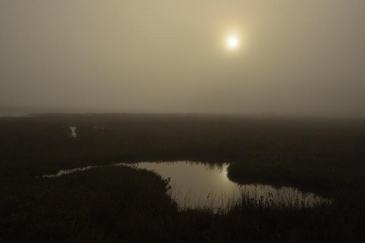 Saltpan Brancaster Staithe in the Fog
