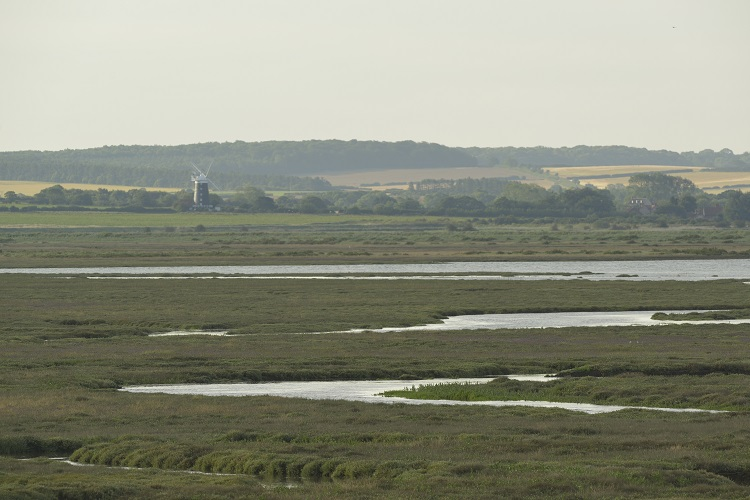 Scolt Head with Hut Marsh and Creek