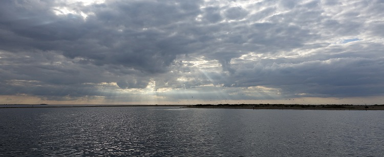 Scolt Head island