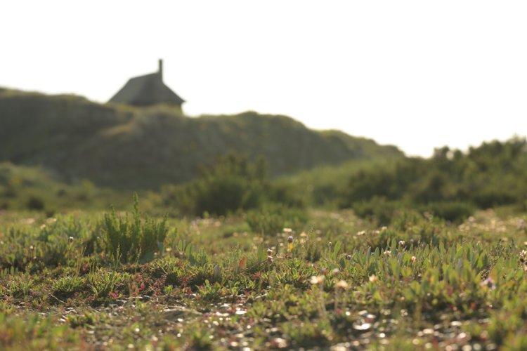 Scolt Hut and Saltmarsh SM13