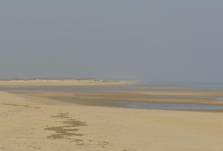 Sandflats Scolt from Gun Hill