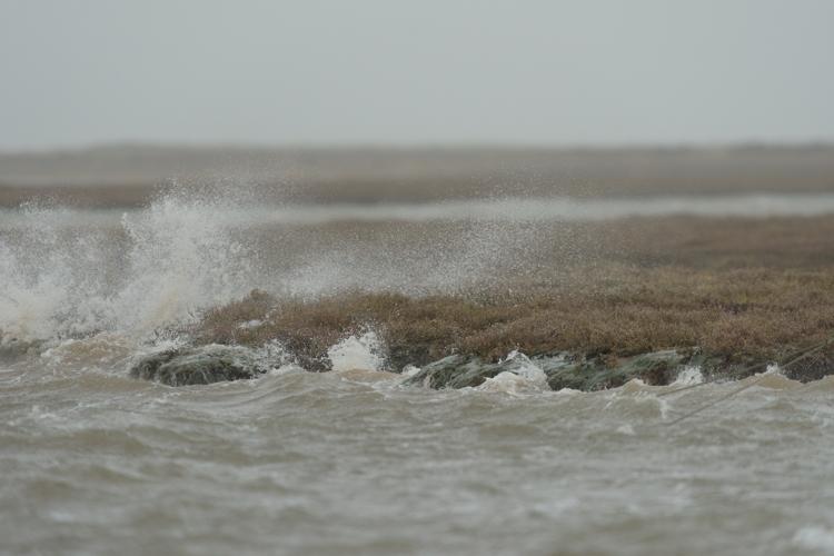 Winter Storm waves batter the Saltmarsh