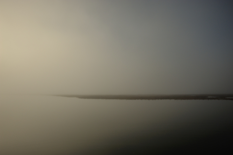 Saltmarsh in the Fog