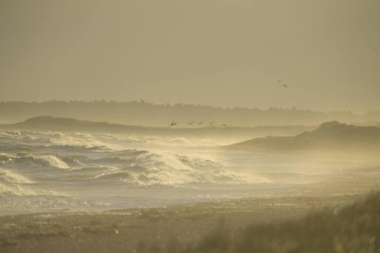 October Stormy Sea at Scolt Head