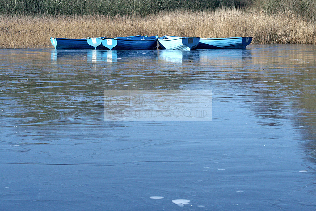 Rescobie Loch, Angus