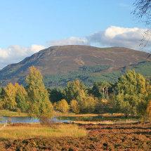 Cairngorm autumn
