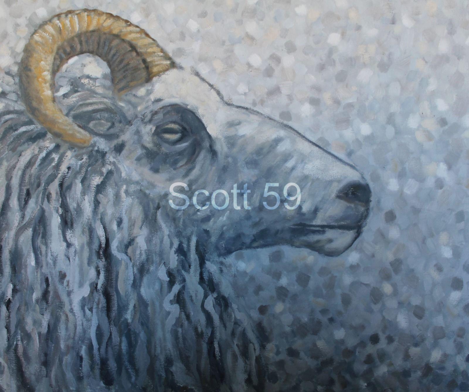 Belier #4 (Oil on canvas 77cm x 92cm)