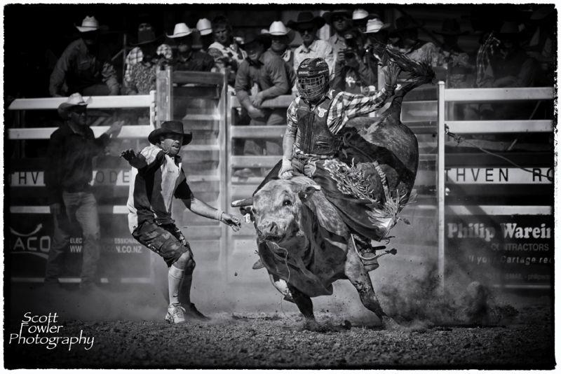 Bullrider 1 jpg